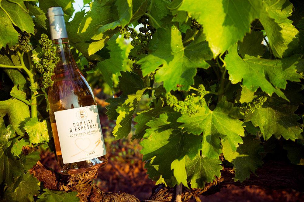 Vin du Domaine d'Espeyran, l'Envol - Rosé